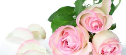 ローズウォーター化粧水のおすすめ人気ランキング11選!人気の国内外ブランドを紹介