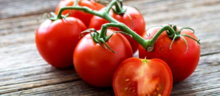 トマトで美味しく脂肪燃焼。綺麗も同時に手に入れるダイエット