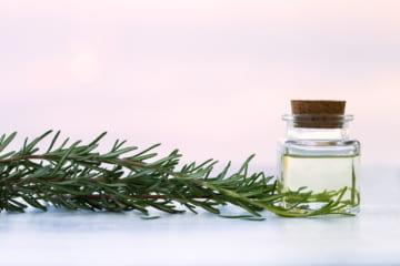 ミノン化粧水の魅力や効果とは?健康的な肌になれる魅力的なアイテム