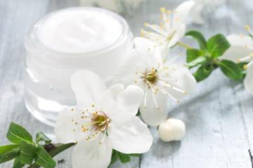 おすすめの「保湿クリーム」を調査。上手に使ってしっとり潤うお肌へ