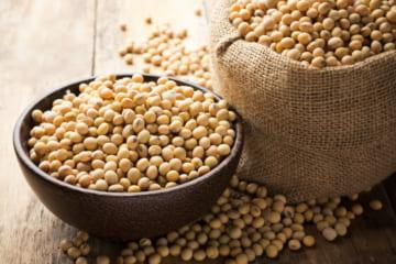 おからのダイエット効果は?大豆の力できれいと元気を手に入れよう