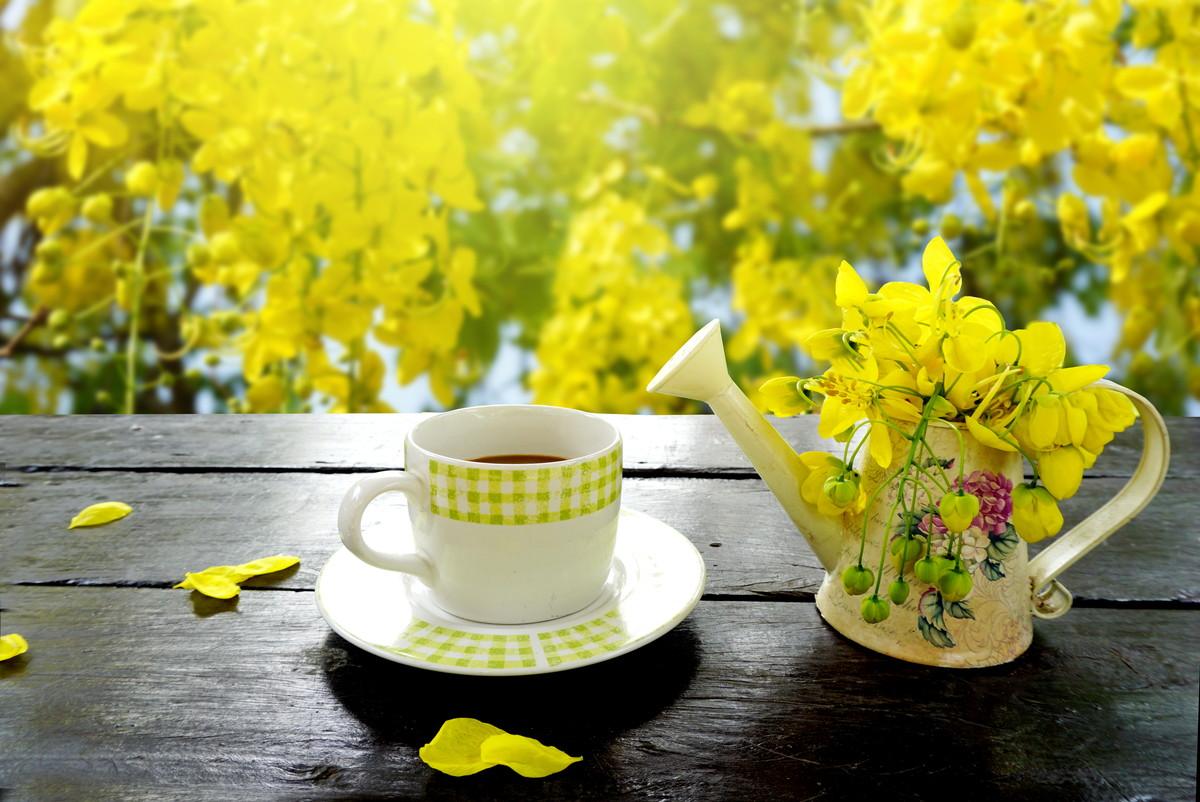 美肌のためにお茶を飲もう。綺麗になれる8つの理由とメリットとは