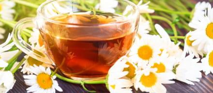 コーヒーを断食に使用するのはNG。体のためにも知っておきたいこと