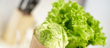 レタスダイエットの気になる効果。正しいダイエット法を解説