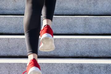 冬のジョギングで脂肪燃焼を促進。健康とダイエットを両立しよう。