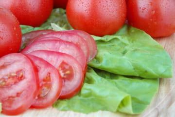 トマトジュースで今日からできるダイエット。体内美人を目指す